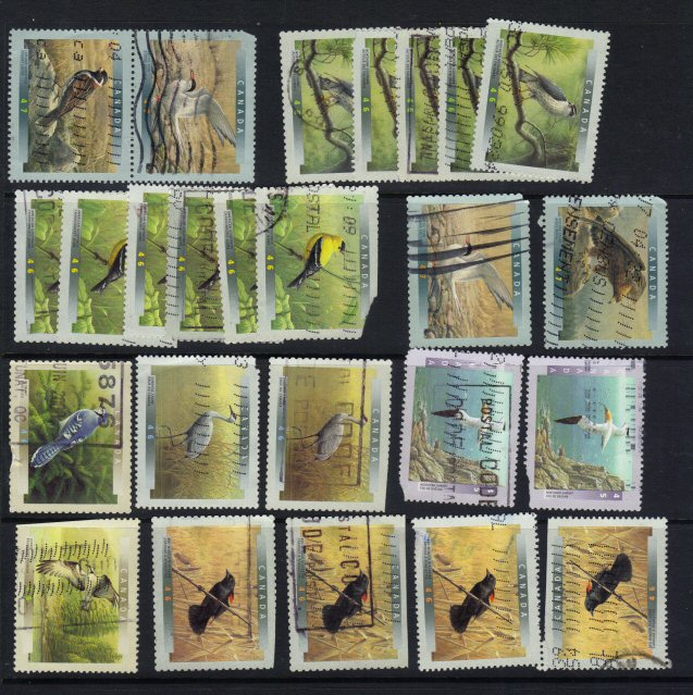 Click to view full-size image in new window.